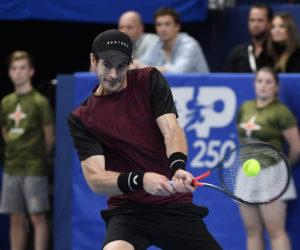 Andy Murray in the final of ATP Antwerp, Belgium 2019